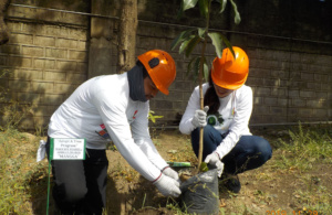 SPI spearheads Adopt-a-Tree Program